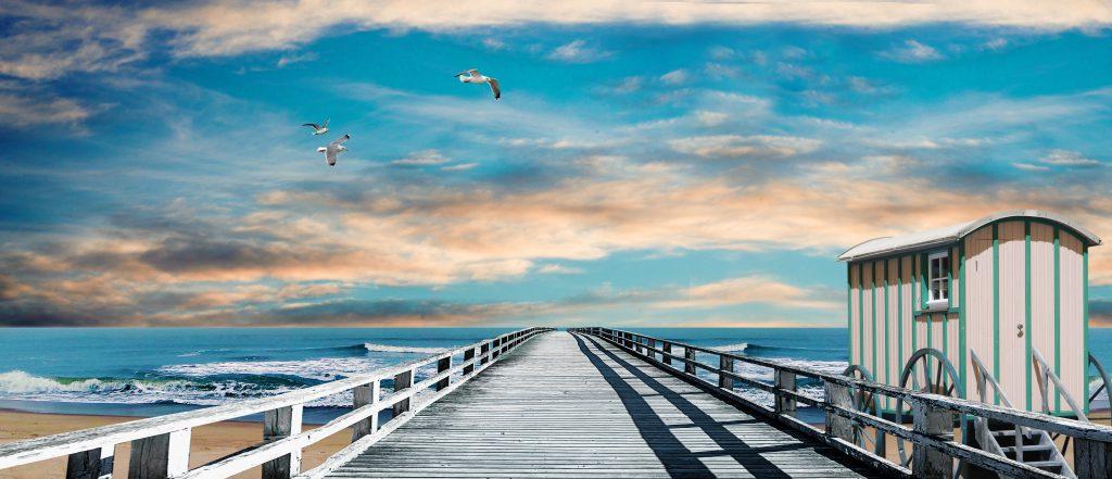 """""""Du kannst die Wellen nicht anhalten, aber Du kannst lernen zu surfen"""" - Josef Goldstein"""